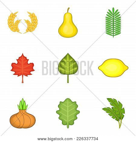 Spread Flora Icons Set. Cartoon Set Of 9 Spread Flora Vector Icons For Web Isolated On White Backgro