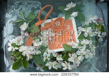 Orange Long Metal Scissors Lying On The Edge Of The Dial Square Orange Watch Among The Abundance Of