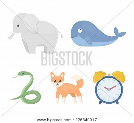 Whale, Elephant, Snake, Fox.animal Set Collection Icons In Cartoon Style Vector Symbol Stock Illustr