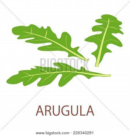 Arugula Icon. Isometric Illustration Of Arugula Vector Icon For Web