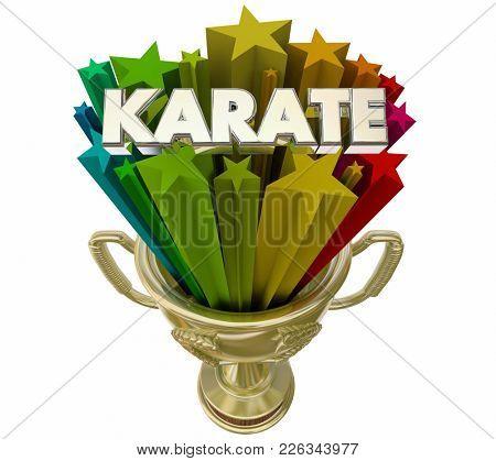 Karate Trophy Award Best Performance Score 3d Illustration