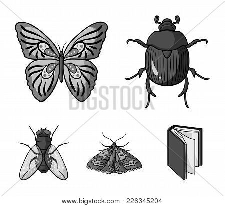 Wrecker, Parasite, Nature, Butterfly .insects Set Collection Icons In Monochrome Style Vector Symbol