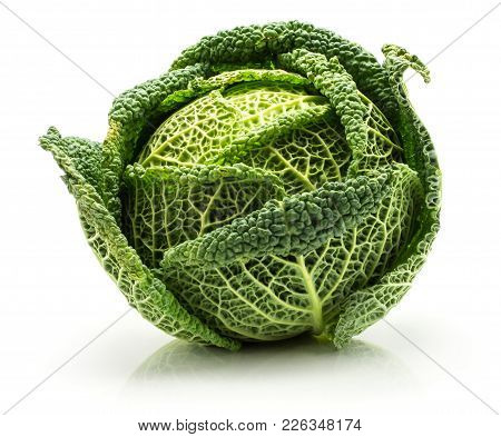 Savoy Cabbage Isolated On White Background One Fresh Green Head