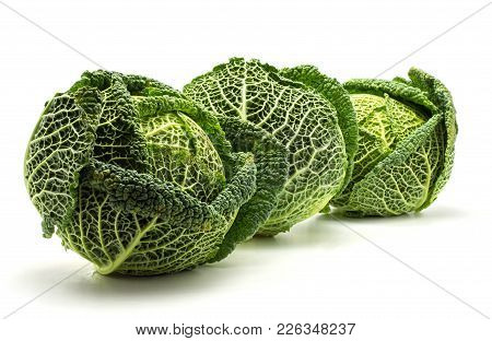 Three Savoy Cabbages Isolated On White Background Fresh Green Heads In Row
