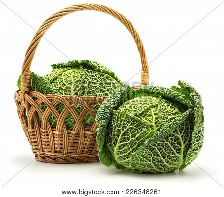 Three Savoy Cabbages In A Wicker Basket Isolated On White Background Fresh Green Heads