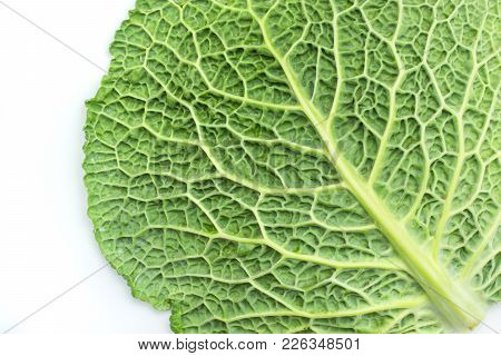 One Savoy Cabbage Leaf Isolated On White Background Fresh Green Top View