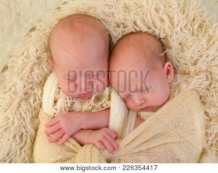 Adorable newborn identical twin baby girls sleeping in a soft basket