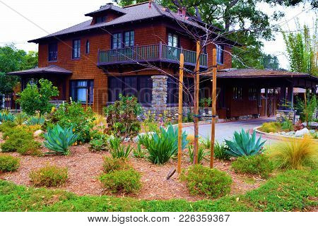 Drought Tolerant Landscaping Including Chaparral Shrubs Taken At A Front Yard In A Residential Neigh