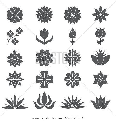 Stylized Plants And Flowers For Different Design Projects. Monochrome Plant And Flower Blossom, Sket