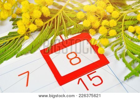 8 March Card. Mimosa Flowers Over The Calendar With Framed 8 March Date. Spring Festive 8 March Post