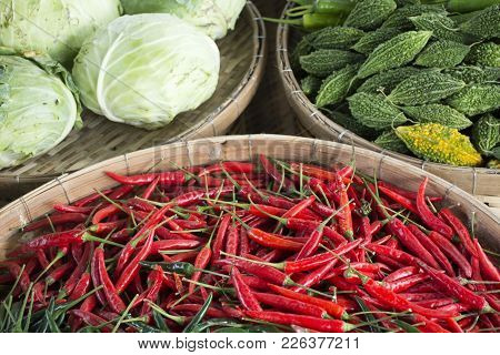 Harvesting Fresh Vegetables For Show And Sale For Thai People In Vegetable And Flora Festival