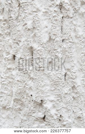 Tree Bark In Whitewash. White Wooden Background.