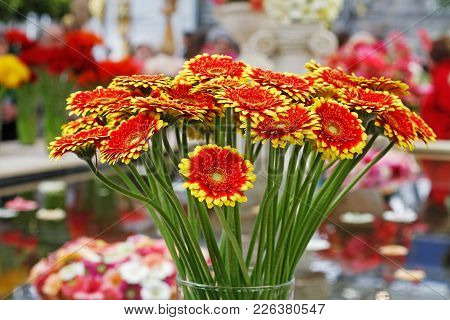 Bouquet Of Beautiful Red-yellow Gerberas In A Vase (gerbera Dali)
