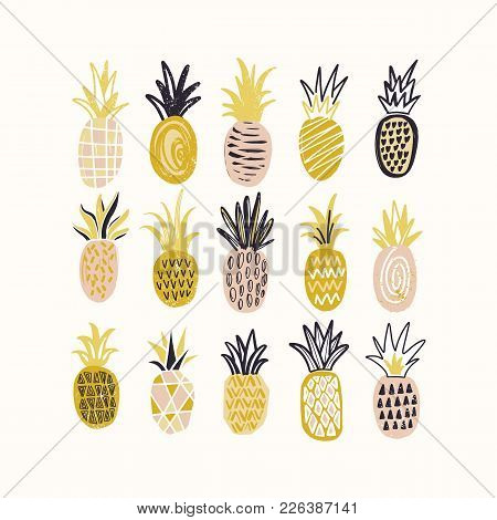 Collection Of Decorative Pineapples Of Various Color And Texture Isolated On White Background. Bundl