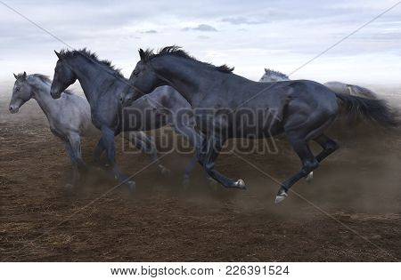 A Herd Of Swift Horses Jumps On The Boundless Steppe