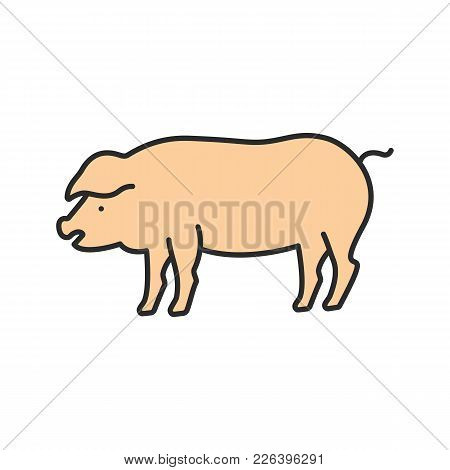 Pig Color Icon. Livestock Farming. Agriculture. Isolated Vector Illustration