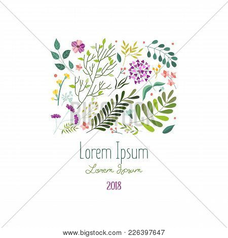 Square Decoration Element With Flowers, Leaves And Herbs, Greeting Card, Banner Template, Vector Ill