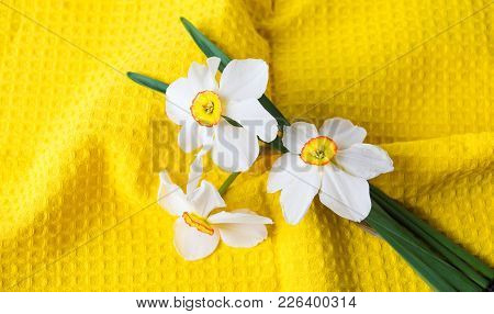 Narcissus Flowers Bouquet On Yellow Textile Background