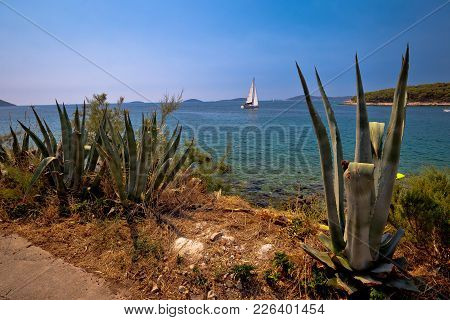 Sailing Waterfront Of Prvic Island View, Sibenik Archipelago Of Dalmatia, Croatia