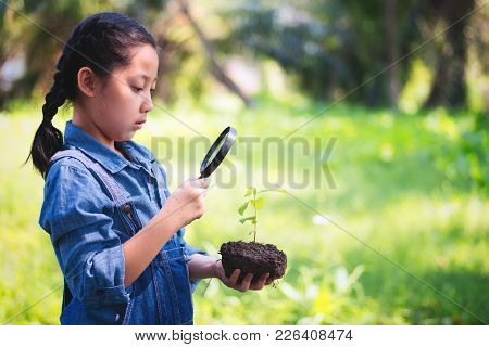 Young Asian Woman Looking Through A Magnifying Glass To Small Tree,holding Young Plant With Soil,gro
