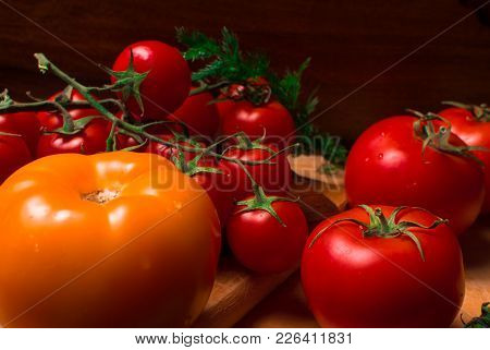 Fresh Red And Yellow Tomatoes With Dill On Wood Background