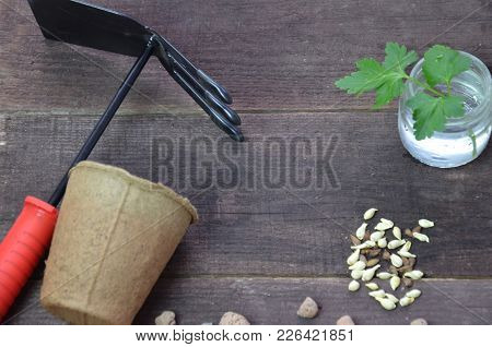 Gardening. Garden Tools And A Pot Of Plant On A Wooden Table. To Work In The Garden