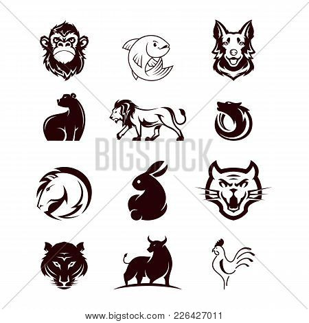 Vector Collection Of Flat Cute Animal Icons Isolated On White Background. Rare Animals And Birds Sym