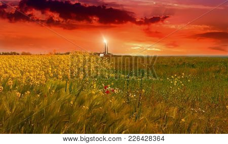 Lighthouse In A Field With Bright Flowers And Grass In The South Of Ukraine Against The Background O