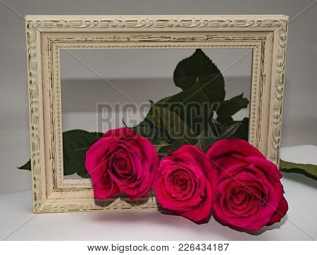 Three Roses In A Frame