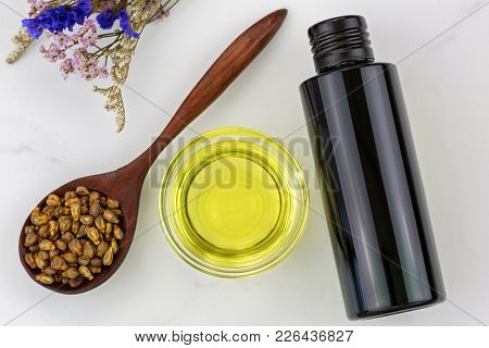 Bottle of organic cold pressed grapeseed oil and clear bowl with dried grape seeds in wooden spoon on marble background