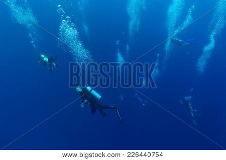 Group of scuba divers descending into deepness, underwater photography
