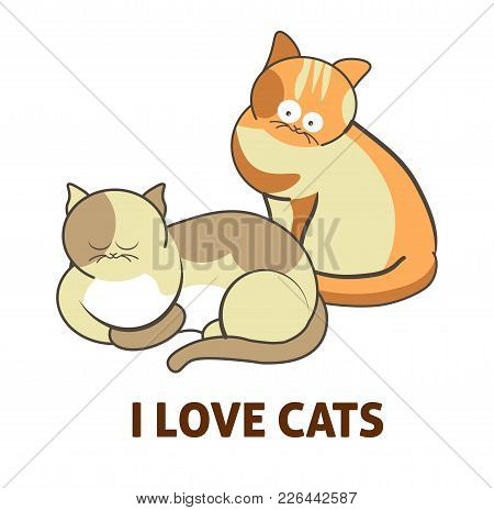 Cute Cartoon Cats And I Love Cats Text And Icon Of Kittens Playing Or Posing. Vector Isolated Flat C