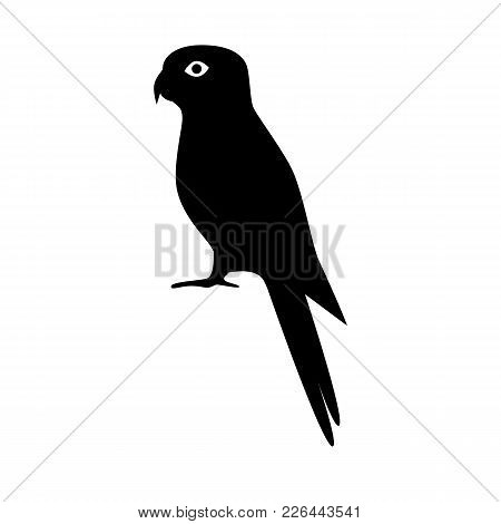 Rosella Parrot Silhouette Icon In Flat Style. Australian Tropical Bird Symbol On White Background