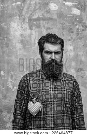 Frown Bearded Man, Caucasian Hipster, With Long Beard And Moustache With Rosy Textile Heart, Love Gi