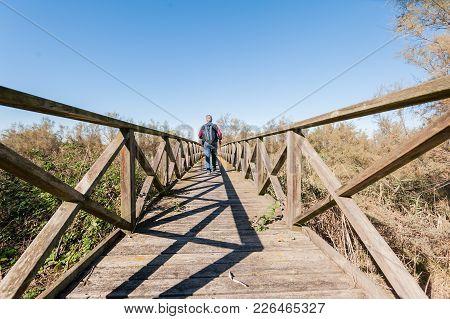 Hiker (60 Years Old) On A Wooden Footbridge .