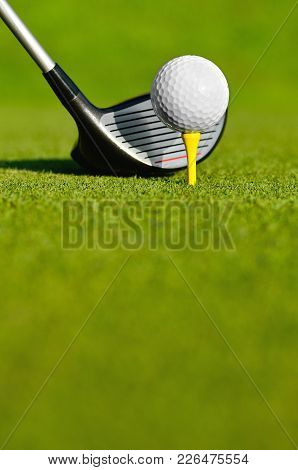 Golf Ball And Drive On The Field