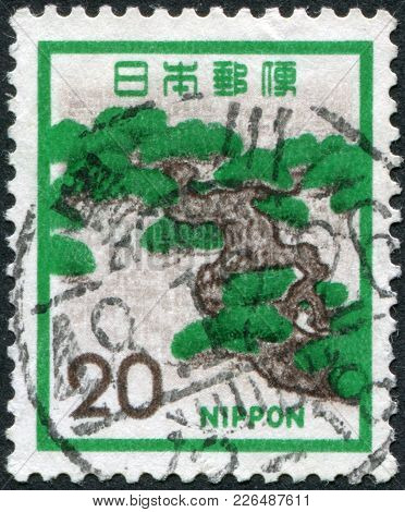 Japan - Circa 1972: A Stamp Printed In Japan, Depicts Mountain Pine (pinus Mugo), Circa 1972