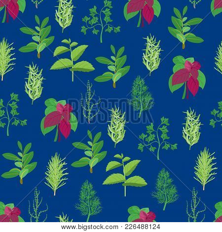 Natural Twig Herb Seamless Pattern Background On A Blue Dill, Parsley, Basil, Mint, Rosemary, Tarrag