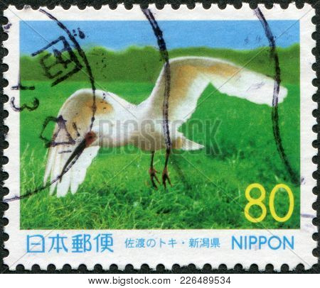 Japan - Circa 1999: A Stamp Printed In Japan, Prefecture Niigata, Shown Latest Crested Ibis (died In