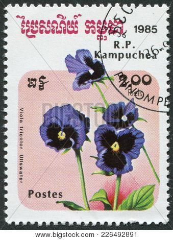 Kampuchea-circa 1985: A Stamp Printed In The Cambodia, Depicts A Flower Viola Tricolor (heartsease),