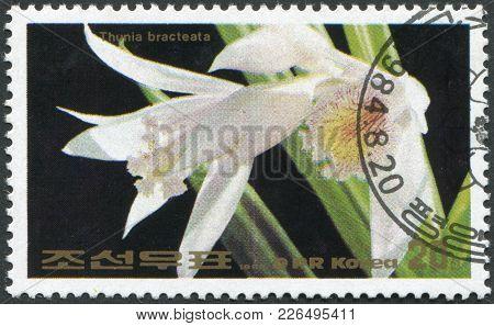 North Korea - Circa 1984: A Stamp Printed In North Korea, Orchid Shows Thunia Bracteata, Circa 1984