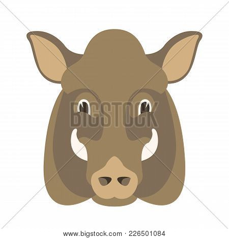 Boar Wild Head Face Vector Illustration Flat Style  Front Side