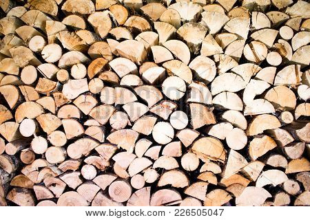 Wooden Log Background. Logs At Forest. Tree Logs.