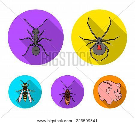 Spider, Ant, Wasp, Bee .insects Set Collection Icons In Flat Style Vector Symbol Stock Illustration