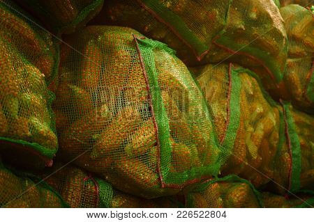 Sacks Of Maize Or Corn Drying On Roof, Rural Village,corn In Green Sacks,close Up.