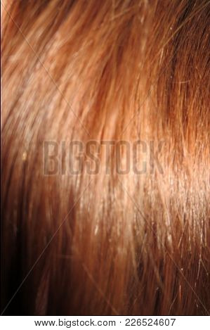 A Close-up Of The Texture Of Auburn Colored Hair