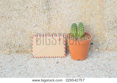 Closeup Brown Envelop And Cactus In Brown Pot On Blurred Stone Floor And Wall Texture Background