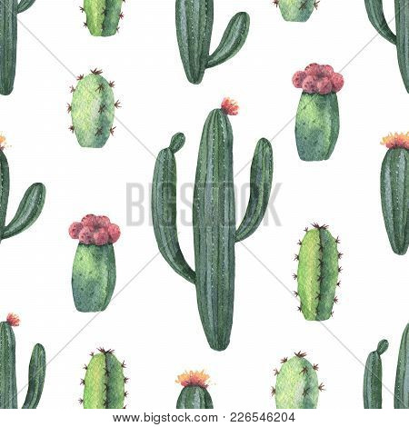 Watercolor Seamless Pattern Of Cacti And Succulent Plants Isolated On White Background. Flower Illus