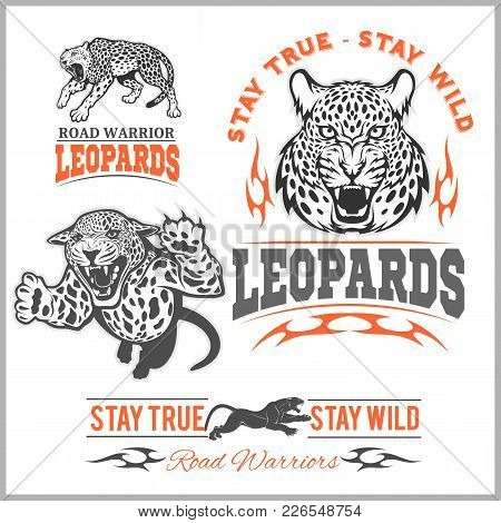 Labels, Emblems And Design Elements For Sport Club With Leopard On White Background