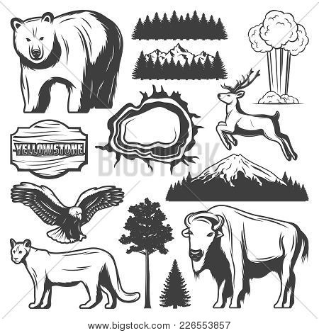 Vintage Yellowstone National Park Icons Set With Animals Forest Mountain Exploding Geyser Grand Pris